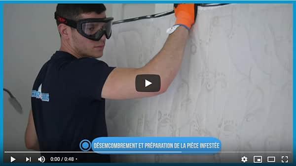 vidéo sur l'extermination des punaises de lit par le traitement chimique