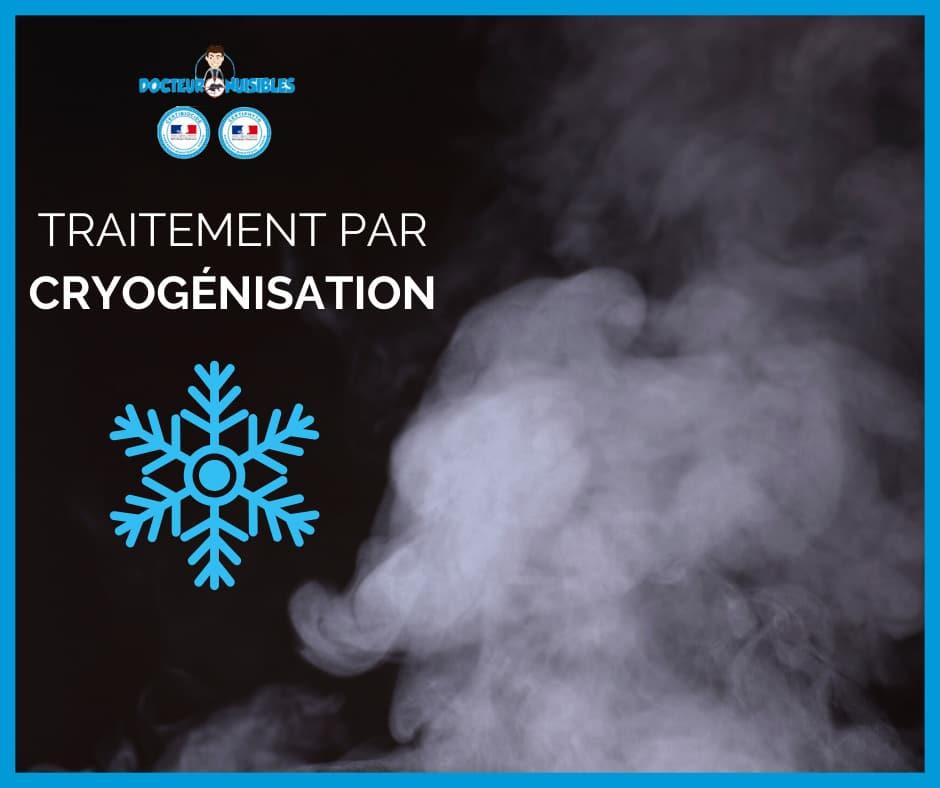 Traitement par cryogénisation